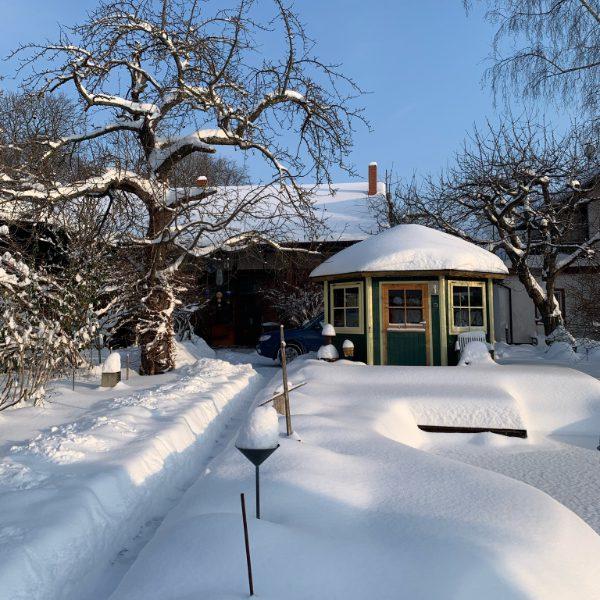 Winter Pavillion_600x600